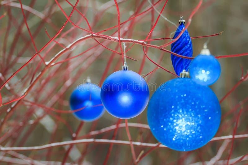 Na zewnątrz Bożenarodzeniowych dekoracyjnych lazuru błyskotania bauble ornamentów wiesza na drzewnych czerwonych gałąź zdjęcia stock