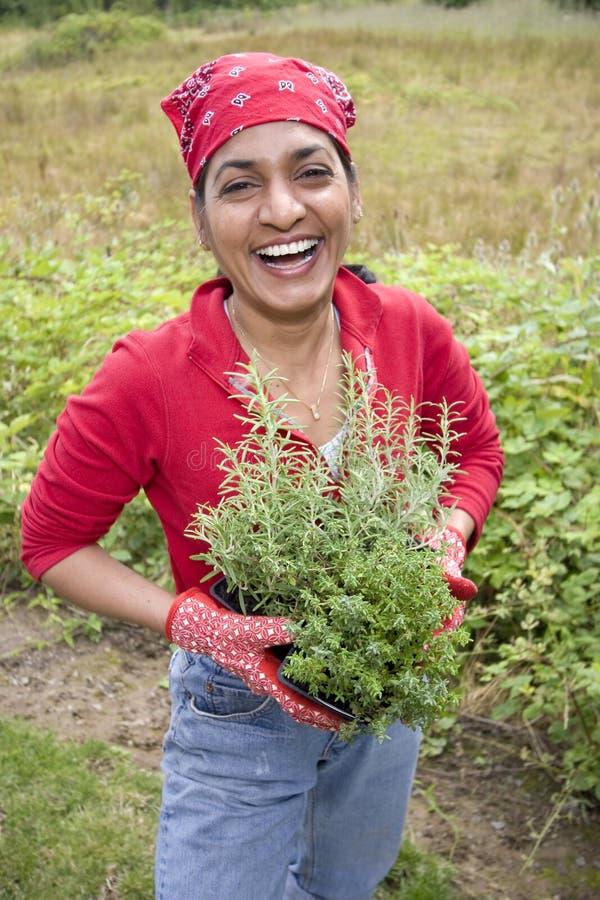 na zewnątrz ogrodniczego działanie kobiety zdjęcia stock
