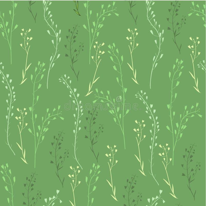 Naadloos bloemenpatroon, Capsella-bloem, Herders` s beurs, Capsella-slijmbeurs-pastoris, de volledige installatie, hand getrokken royalty-vrije illustratie