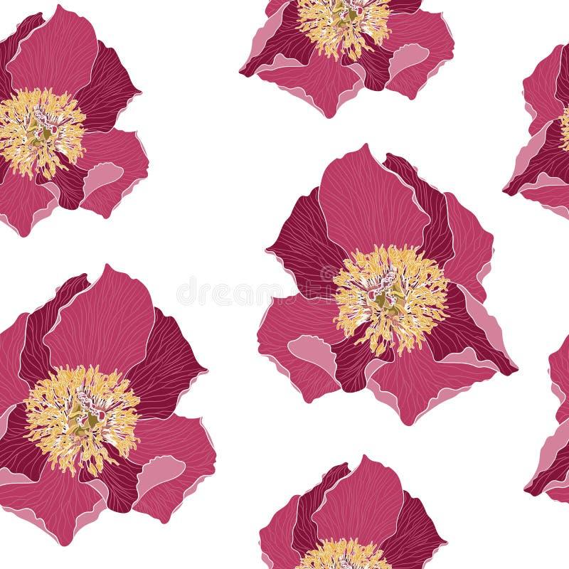 Naadloos bloemenpatroon met licht-magenta pioenen Pioenbloemen voor uw ontwerp Witte achtergrond vector illustratie