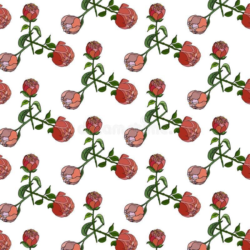 Naadloos bloemenpatroon met pioenen vector illustratie
