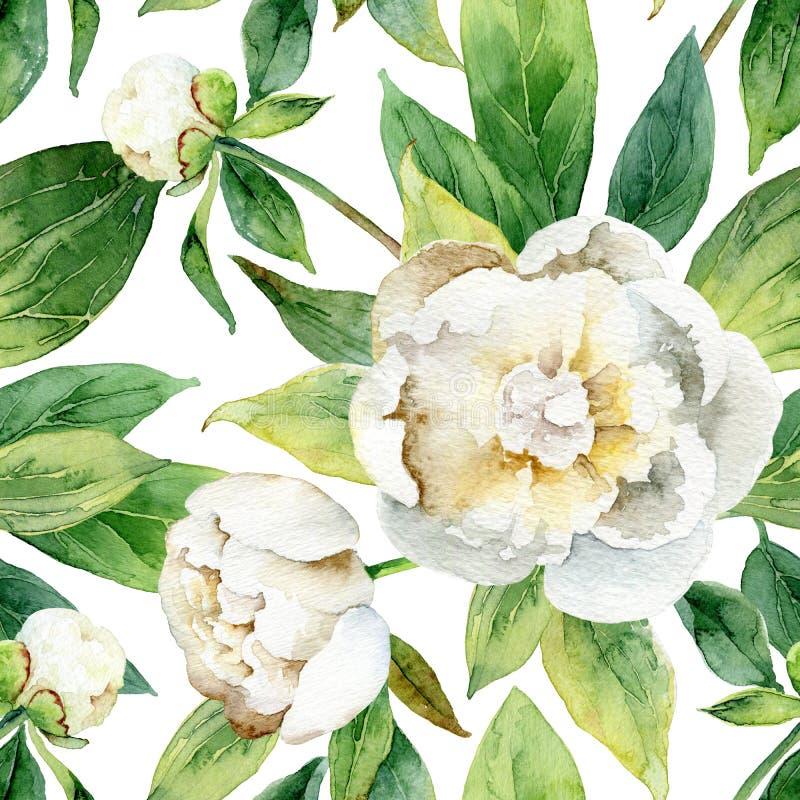 Naadloos bloemenpatroon met pioenen stock illustratie
