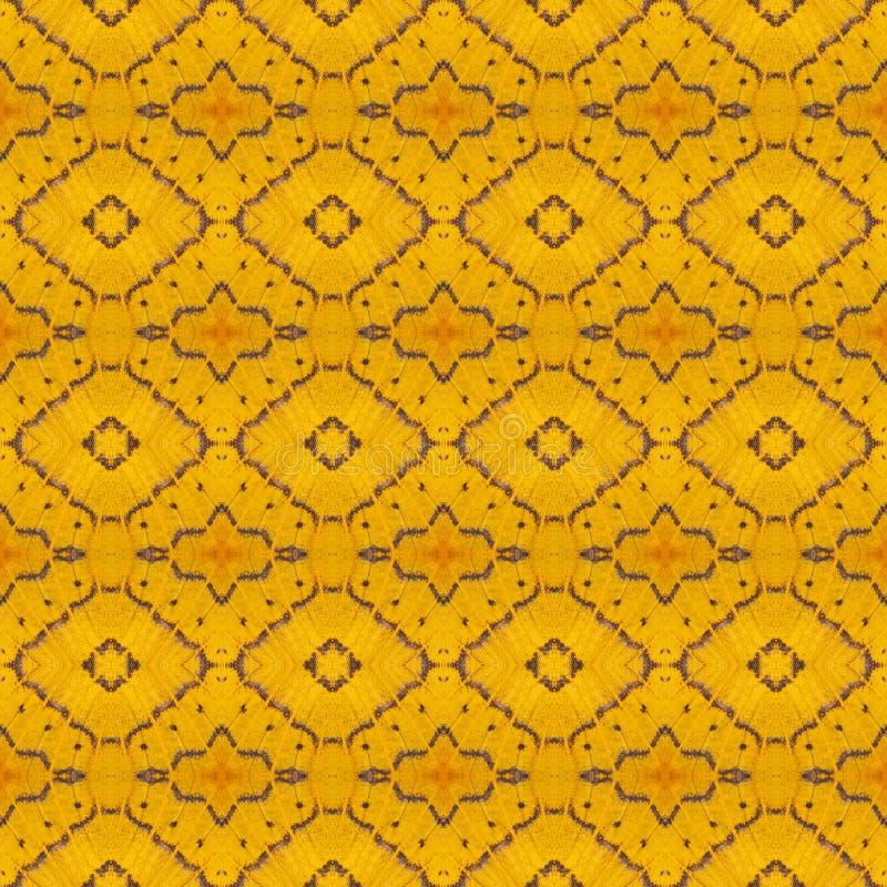 Naadloos die patroon van kleurrijke vlindervleugel wordt gemaakt voor achtergrondtextuur stock afbeelding