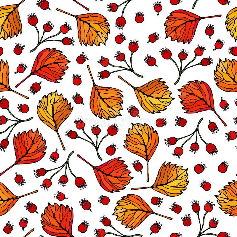 Naadloos Eindeloos Patroon van Haagdoornbessen, Bladeren Rode Oranje, Gele Achtergrond De herfst of Dalings Plantaardige Oogstinz stock illustratie