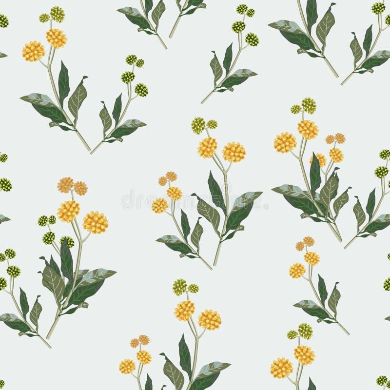 Naadloos elegant bloemenpatroon van gele wildflowers De botanische motieven zijn willekeurig verspreid royalty-vrije illustratie