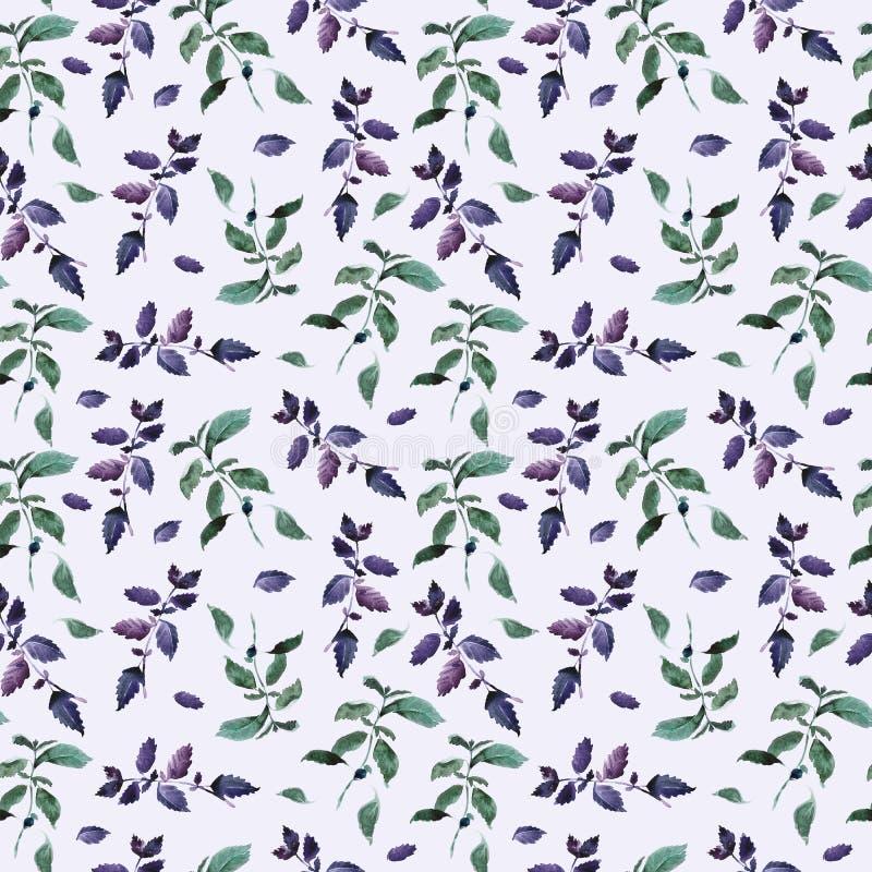 Naadloos groen basilicumpatroon, decor van het Waterverf het violette basilicum, kokende kruiden backgroun vector illustratie