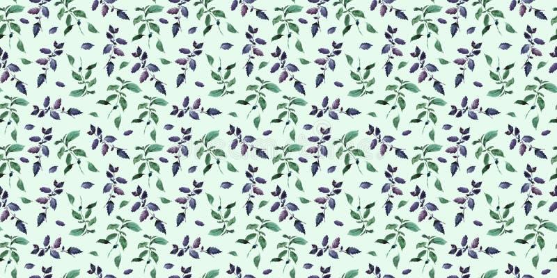 Naadloos groen basilicumpatroon, decor van het Waterverf het violette basilicum, kokende kruiden backgroun royalty-vrije illustratie