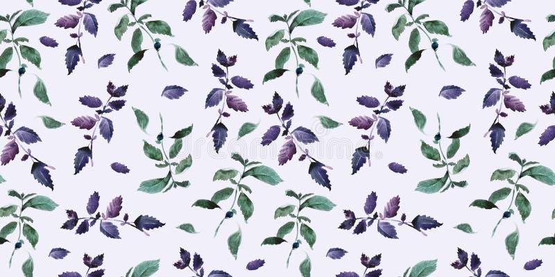 Naadloos groen basilicumpatroon, decor van het Waterverf het violette basilicum, kokende kruiden backgroun stock illustratie