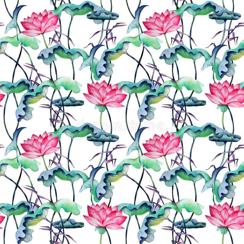 Naadloos Japans stijlpatroon met roze lotuses vector illustratie
