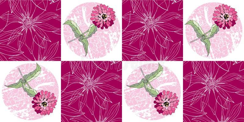 Naadloos lapwerkpatroon met de roze bloemen van Zinnia royalty-vrije illustratie
