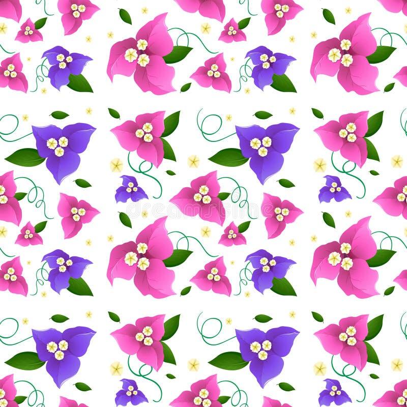 Naadloos ontwerp als achtergrond met bougainvilleabloemen vector illustratie