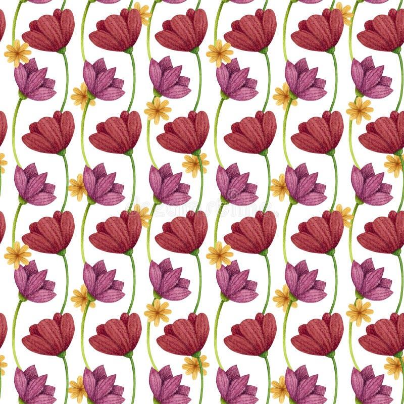 Naadloos patroon Bloemenpapaver en madeliefje stock illustratie