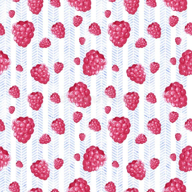 Naadloos patroon, dat van roze zoete frambozen, hand wordt gemaakt getrokken botanische illustratie royalty-vrije illustratie
