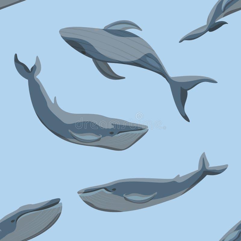 Naadloos patroon De blauwe vinvissen in verschillend stelt op een blauwe achtergrond royalty-vrije illustratie