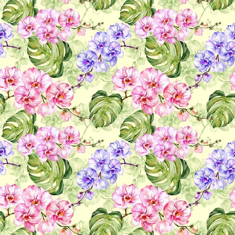 Naadloos patroon De kleurrijke orchidee bloeit met overzichten en grote groene monsterabladeren op lichtgroene achtergrond vector illustratie