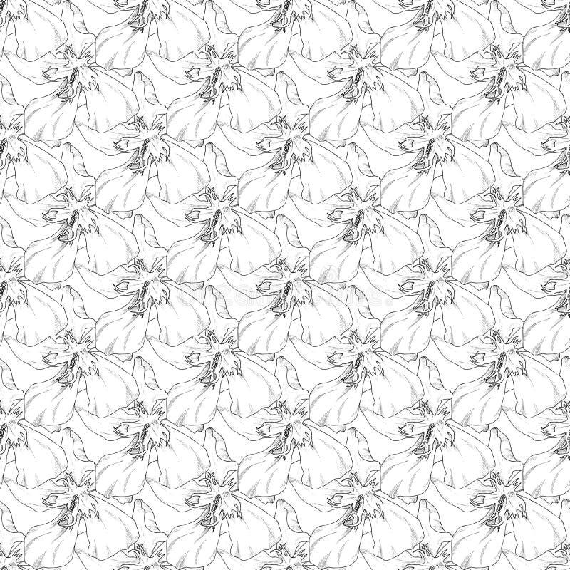 Naadloos patroon Installatie in bloesem, tak met de schets van de bloeminkt Malplaatje voor een adreskaartje, banner, affiche, no vector illustratie
