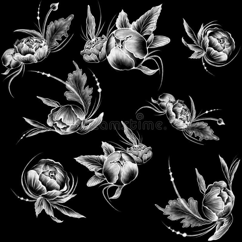 Naadloos patroon Krijt getrokken stijl witte bloemen op de vlakke zwarte achtergrond vector illustratie