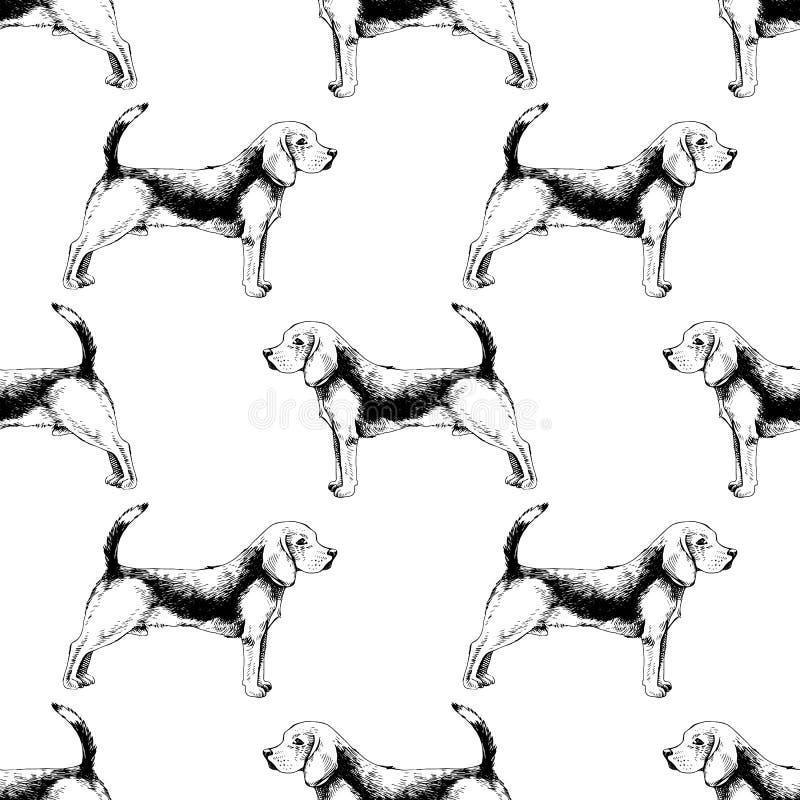 Naadloos patroon met brakken vector illustratie