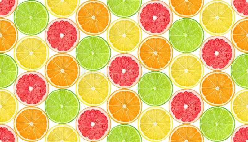 Naadloos patroon met citrusvruchten royalty-vrije stock fotografie