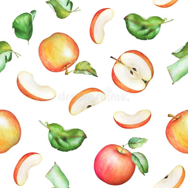 Naadloos patroon met de hand getrokken vruchten van de waterverfappel en gre stock illustratie