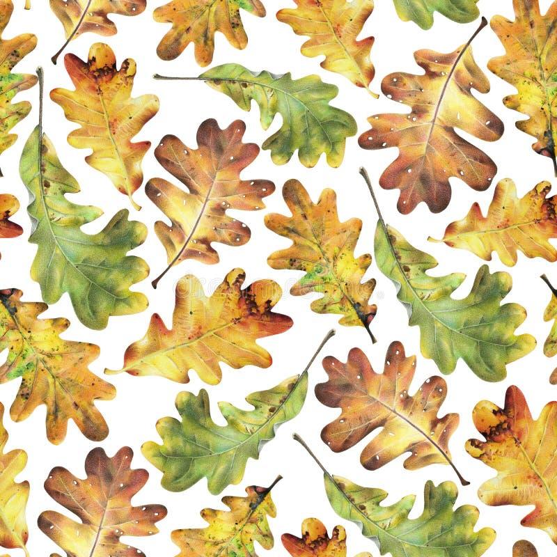 Naadloos patroon met de herfst gele bladeren van eik Hand getrokken illustratie met kleurpotloden stock foto