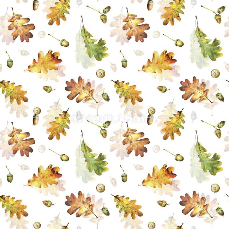 Naadloos patroon met de herfstbladeren van eik en eikels Hand getrokken illustratie met kleurpotloden stock afbeeldingen