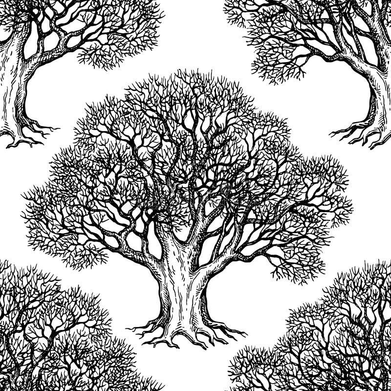 Naadloos patroon met eik stock illustratie