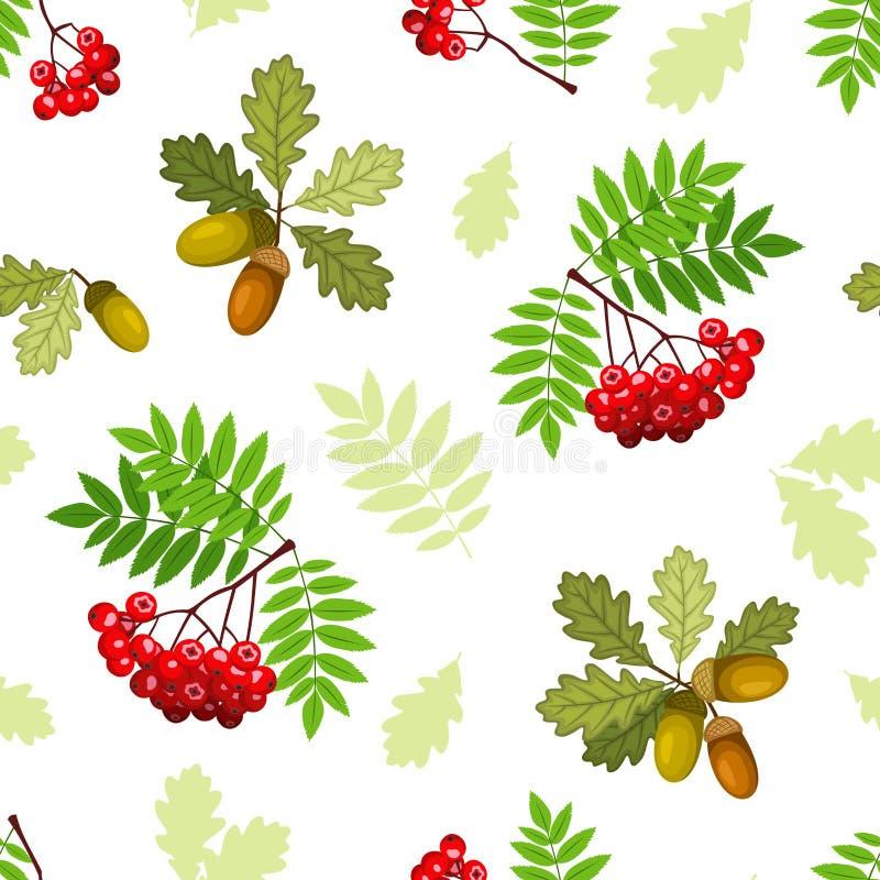 Naadloos patroon met eik en lijsterbessentakken, bladeren en bessen Vector illustratie royalty-vrije illustratie
