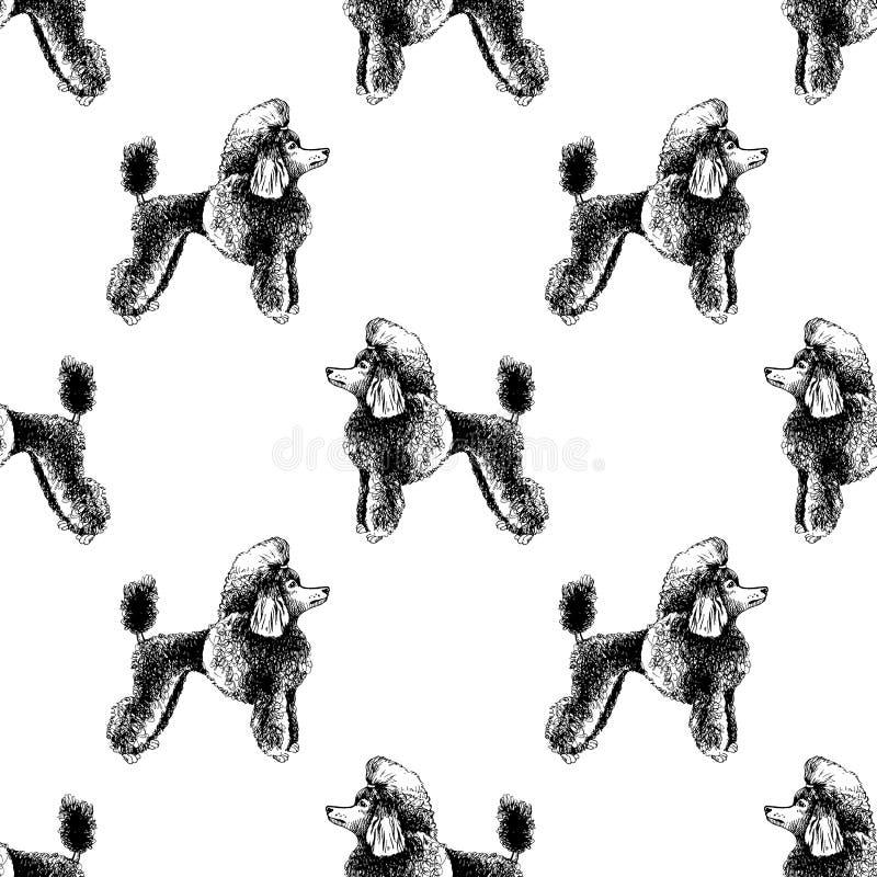 Naadloos patroon met hand getrokken poedels royalty-vrije illustratie