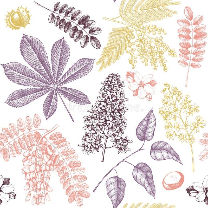 Naadloos patroon met hand getrokken tot bloei komende bomenillustraties Vector botanische achtergrond Hand geschetste elementen royalty-vrije illustratie