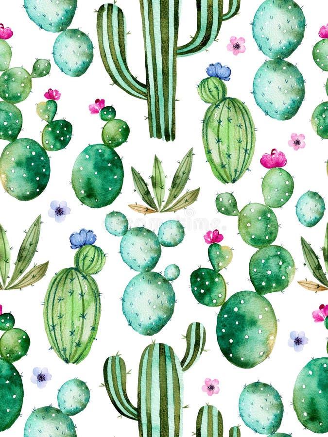 Naadloos patroon met hoogte - de cactusinstallaties van de kwaliteitshand geschilderde waterverf en purpere bloemen stock illustratie