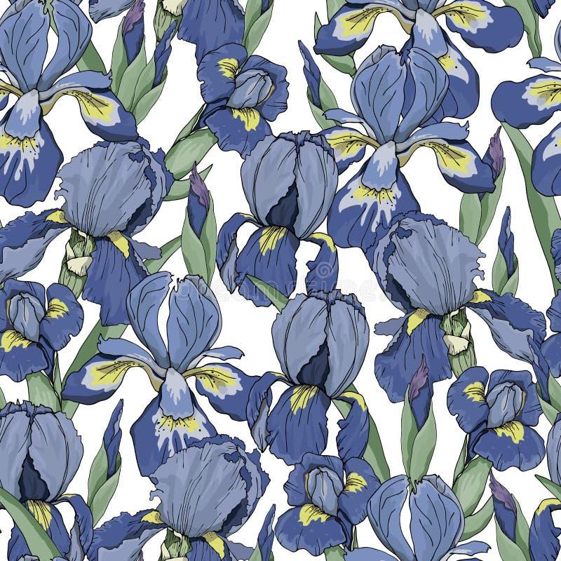 Naadloos patroon met Irisbloemen royalty-vrije illustratie
