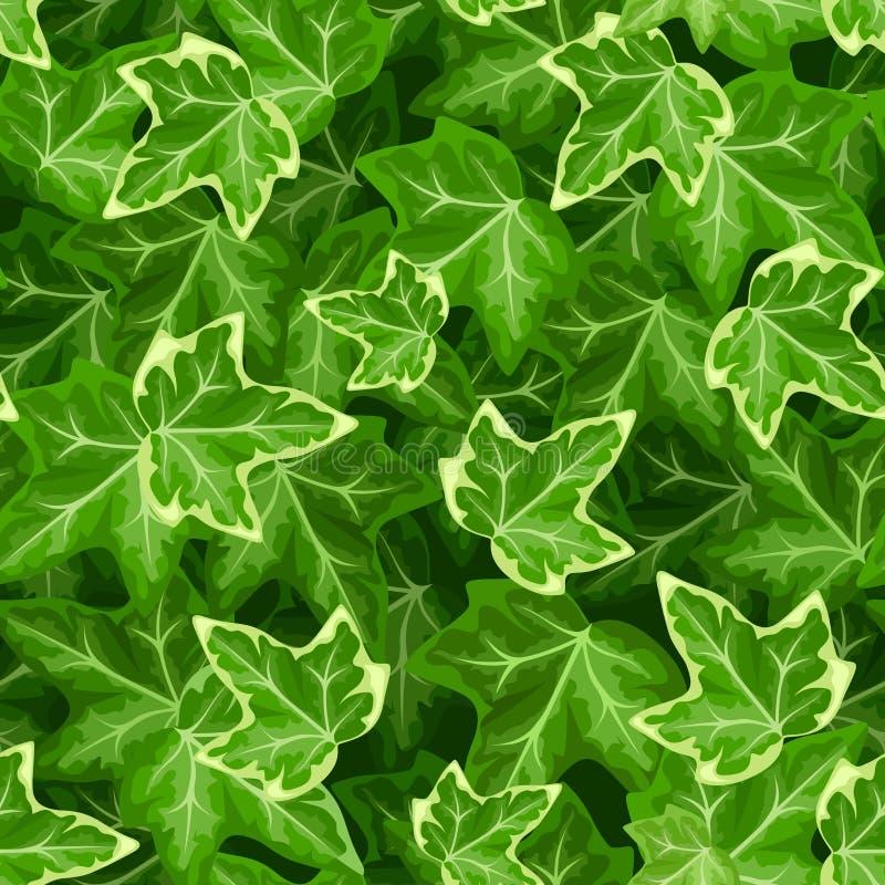 Naadloos Patroon met Ivy Leaves Vector illustratie stock illustratie