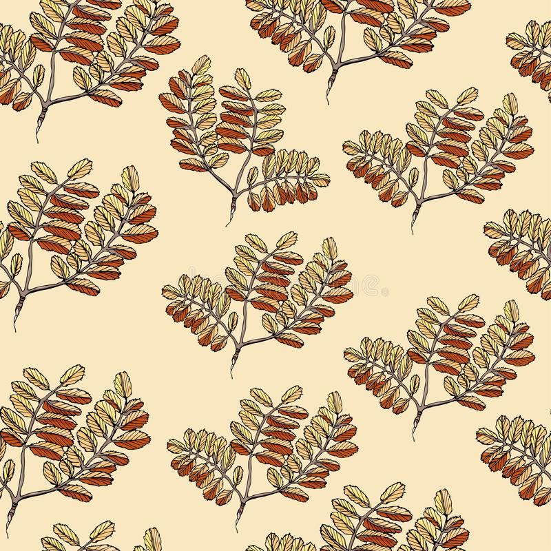 Naadloos patroon met kleurenbladeren van lijsterbes Hand getrokken die inktschets op lichtgele achtergrond wordt geïsoleerd royalty-vrije illustratie