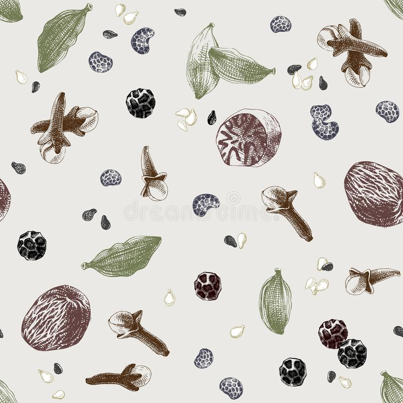 Naadloos patroon met kruiden stock illustratie