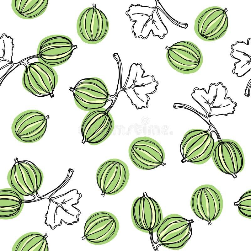 Naadloos patroon met kruisbes Fruitillustratie De Indische boom van kruisbesmalacca, of kruisbes Eetbaar fruit Goed voor backdr vector illustratie