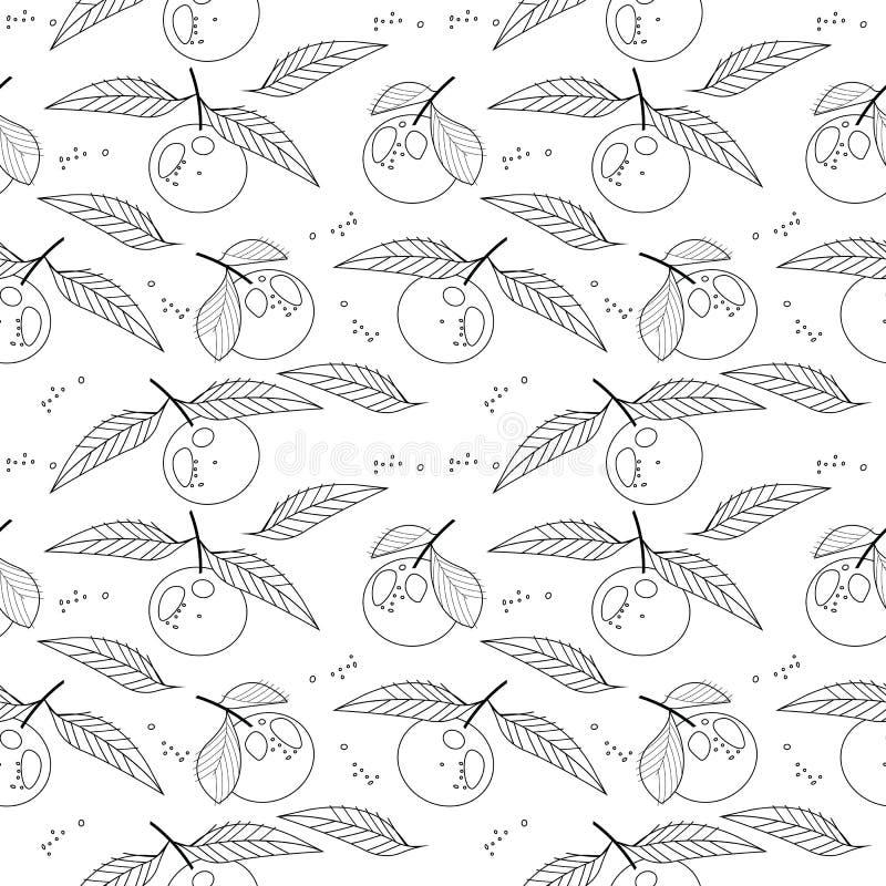 Naadloos patroon met mandarines vector illustratie