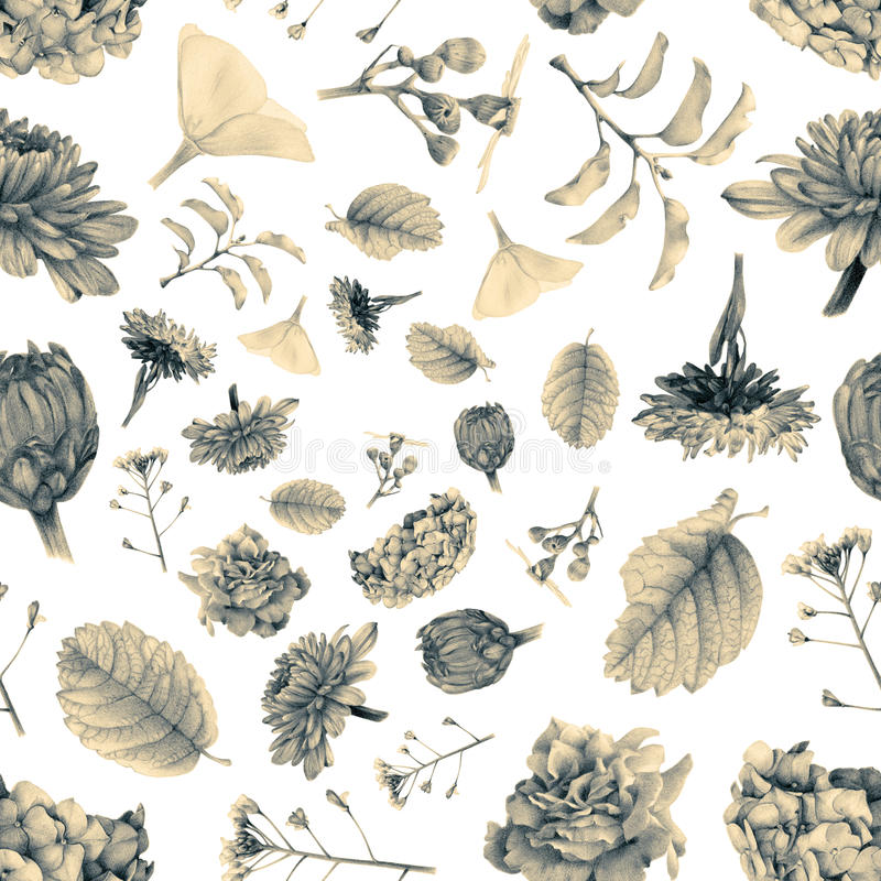 Naadloos patroon met mooie de lentebloemen en installaties royalty-vrije illustratie