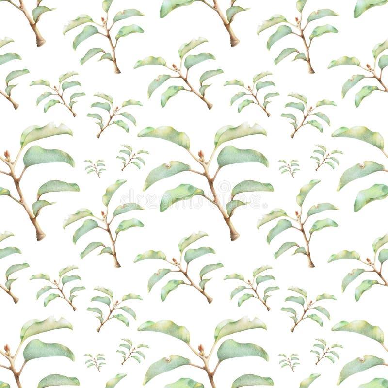 Naadloos patroon met mooie de lenteinstallaties stock illustratie
