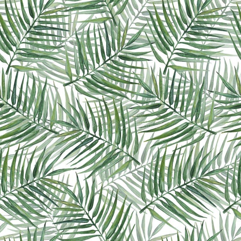 Naadloos patroon met palmbladen De illustratie van de waterverf stock fotografie