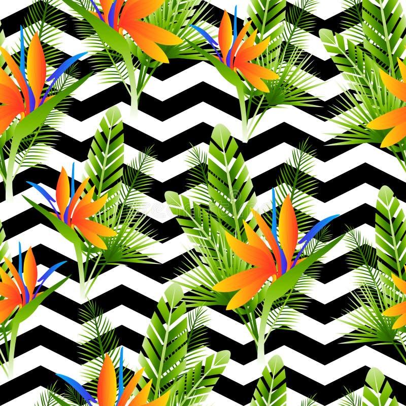 Naadloos patroon met strelitziabloemen stock illustratie