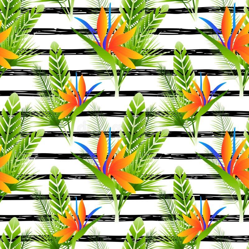 Naadloos patroon met strelitziabloemen vector illustratie