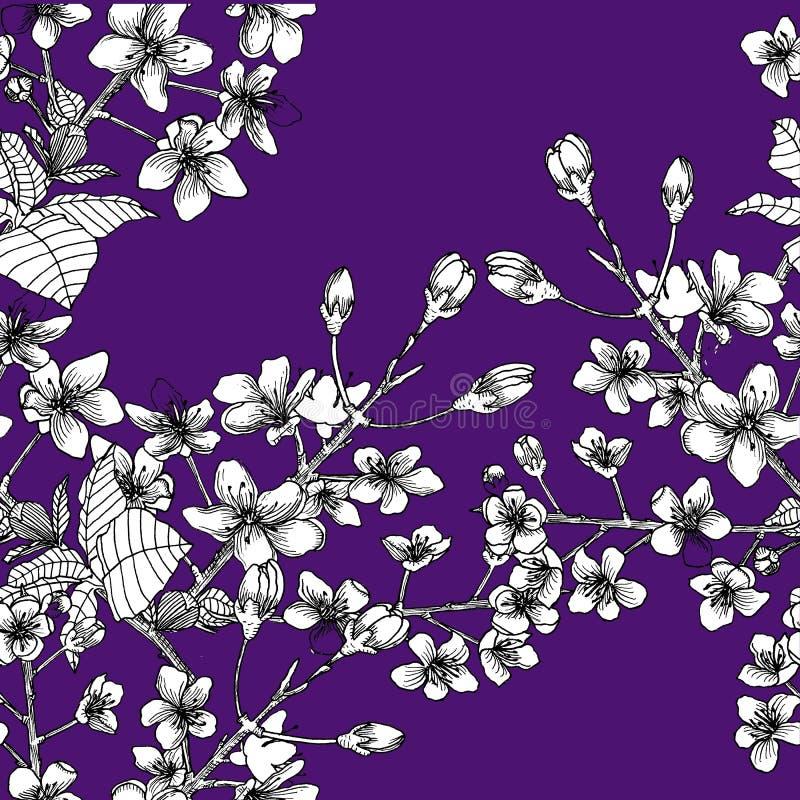 Naadloos patroon met tak van sakura stock illustratie