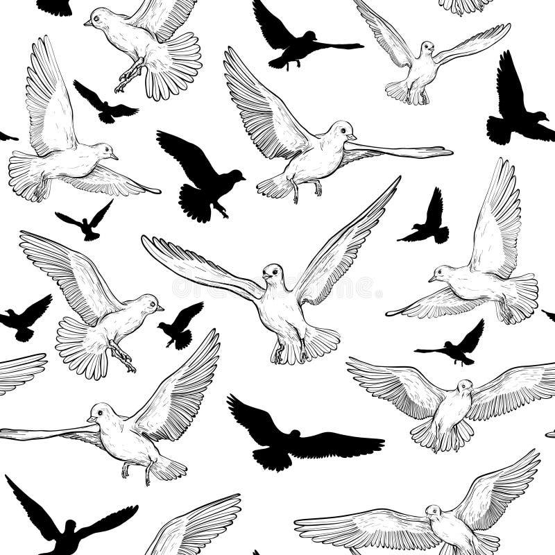 Naadloos patroon met vliegend duif en vogelssilhouet Rebecca 36 vector illustratie