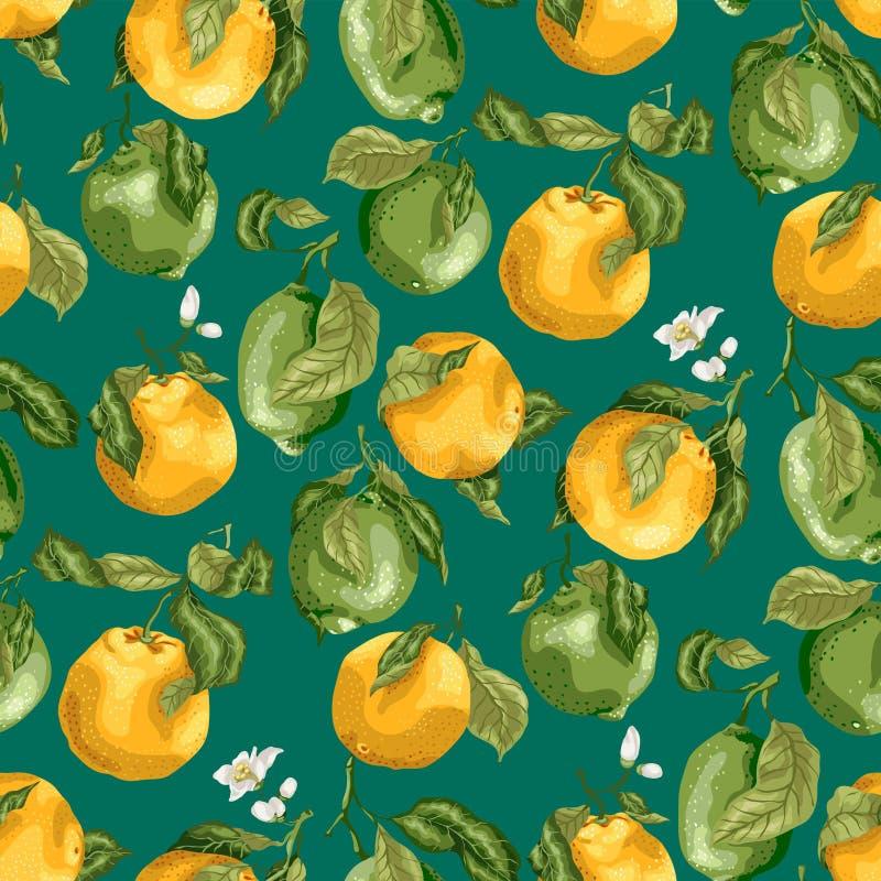 Naadloos patroon met vruchten Verse sinaasappelen en kalk met flowe vector illustratie
