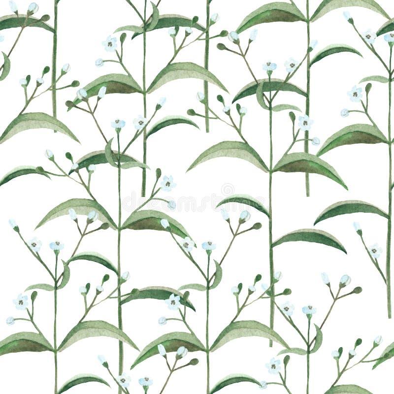Naadloos patroon met waterverfbloemen en bladeren royalty-vrije illustratie
