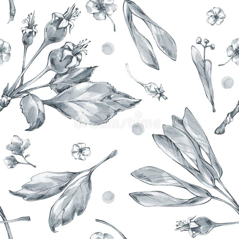 Naadloos patroon met waterverfbloemen en kruiden Originele hand getrokken illustratie Botanische textuur zwart-wit vector illustratie