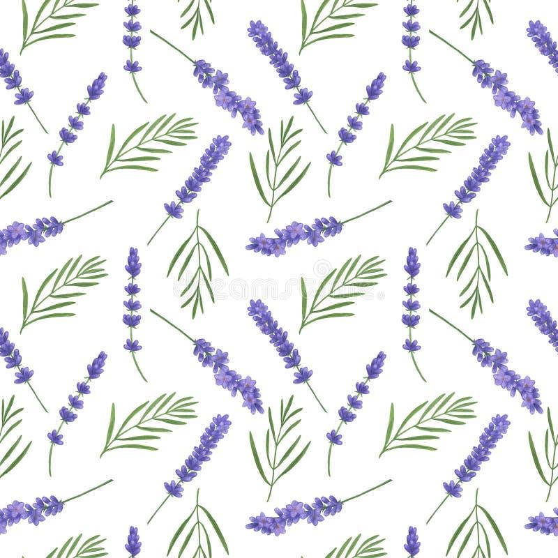 Naadloos patroon met waterverflavendel Illustratie van van het bladtwijgen van de Provence van de texturen met de hand gemaakte b vector illustratie