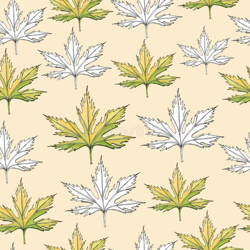Naadloos patroon met zwart-wit en kleurenbladeren van acerboom Hand getrokken inktschets die op lichtgele achtergrond wordt geïso stock illustratie