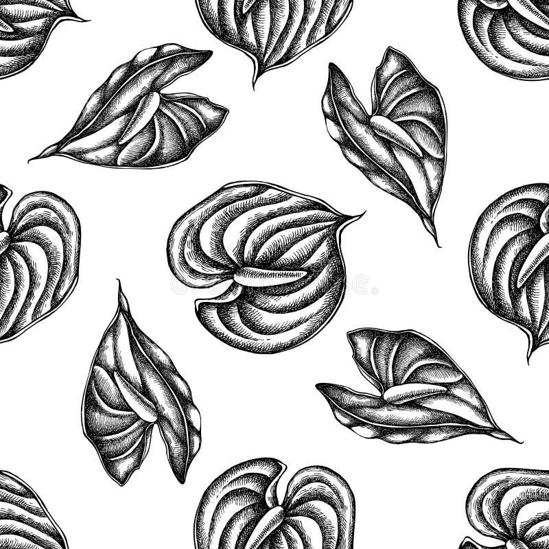 Naadloos patroon met zwart-witte anthurium stock illustratie